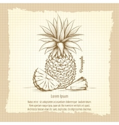 Pineapple retro style poster vector