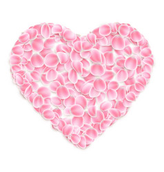 Pink sakurae petals in heart shape isolated on vector