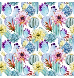 Cactus seamless patterns vector image vector image