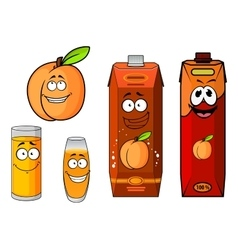 Apricot fruit juice packs and glasses vector image