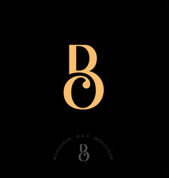 b and c combined letters initial beautiful vector image