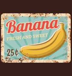 Banana fruits metal rusty plate market food price vector