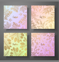 collection of square gold cards with berries vector image