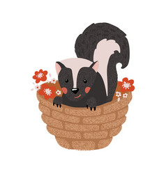cute hand drawn skunk isolated on white vector image