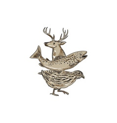 Deer Trout Quail Drawing vector image