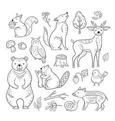 Doodle forest animals woodland cute baby animal vector