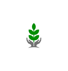 eco care logo icon design vector image