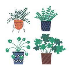 flora in pots set botanical potted plants vector image