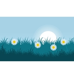 Flower and grass of landscape vector