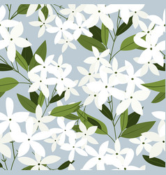 jasmine flowers seamless pattern vector image