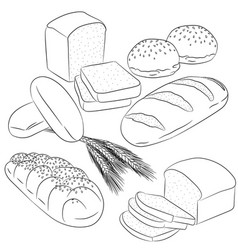 Line art various bread baking vector