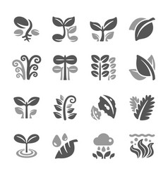 plant and leaf icon set vector image