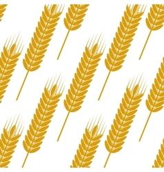 Seamless pattern of ears with ripe grains vector