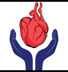 Hands and heart Icon of kindness and charity vector image vector image