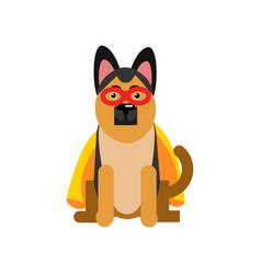 superhero dog sheepdog wearing an orange cape vector image vector image