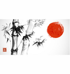 Bamboo and red sun on white background vector