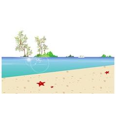 Beach coast background vector