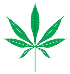 Cannabis leaf1 resize vector