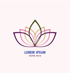 Floral bouquet design garden pink peach lavender vector
