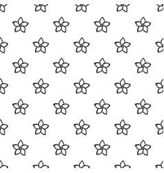 plumeria flower pattern seamless vector image