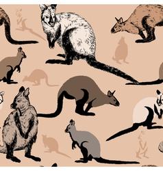 Seamless pattern with Australian kangaroo vector image