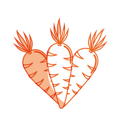 Silhouette carrots organic healthy vegetable vector
