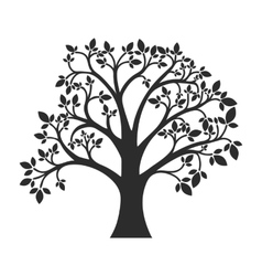 Silhouette of tree with leaves vector