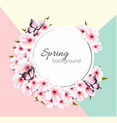 spring nature background with a pink sakura vector image