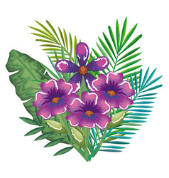 tropical and exotics flowers and leafs vector image