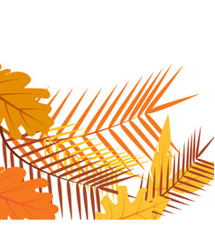 tropical autumn leaves floral exotic jungle vector image