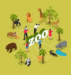 zoo isometric flowchart vector image
