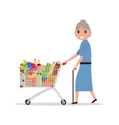 cartoon old woman with shopping trolley vector image vector image