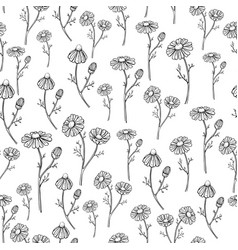 chamomile drawing seamless pattern vector image vector image