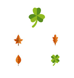 Flat icon leaf set of alder leafage foliage and vector