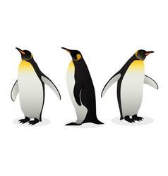 Flock emperor penguins on white background vector