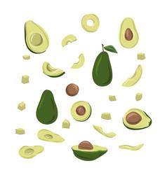 Set hand drawn avocado food hand drawn vector