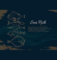 template sea fish retro vector image
