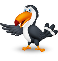 toucan bird cartoon presenting vector image
