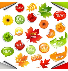 Autumn Collection Sale Elements With Leaves vector image