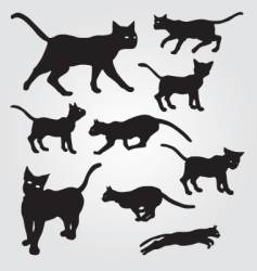 domestic cats vector image vector image