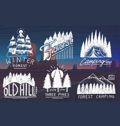 Camping badges mountains coniferous forest vector