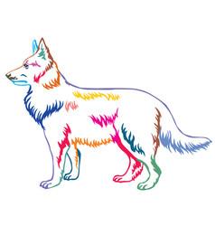 Colorful decorative standing portrait berger vector