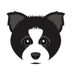 Cute border collie dog avatar vector