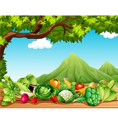 Fruits and vegetables on the table vector image
