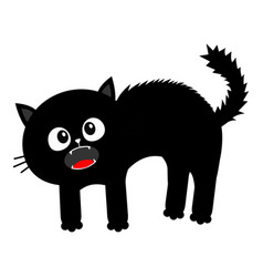 screaming kitten frightened cat arch back hair vector image