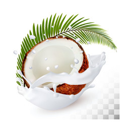 coconut in a milk splash on a transparent vector image vector image
