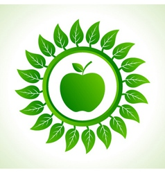 green apple organic food with leaf vector image vector image
