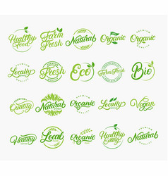 set of hand written lettering logos vector image vector image