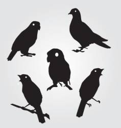 sparrows and pigeons vector image vector image