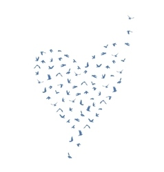 Doves and pigeons set heart shape for peace vector image